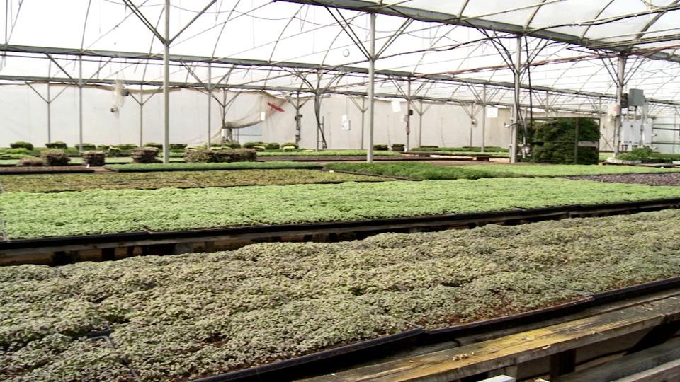De la terre à la table